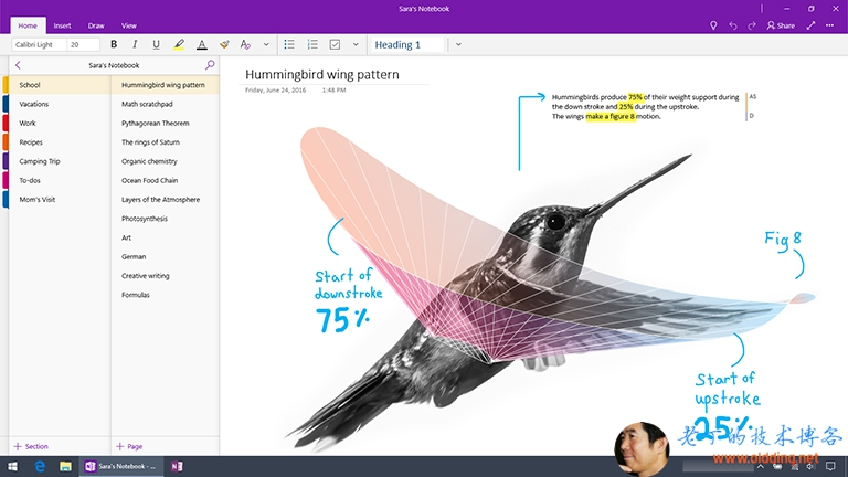 Screenshot of OneNote for Windows 10